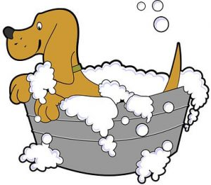 Cartoon dog getting a bath